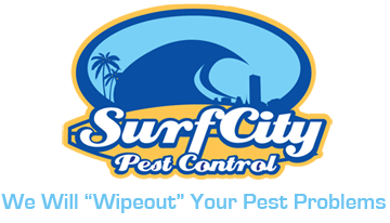 Orange County & LA County Pest Control | Surf City Pest Control